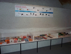 Game&Watch Museum 2010